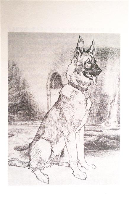 沈石溪激情动物小说·神奇的警犬