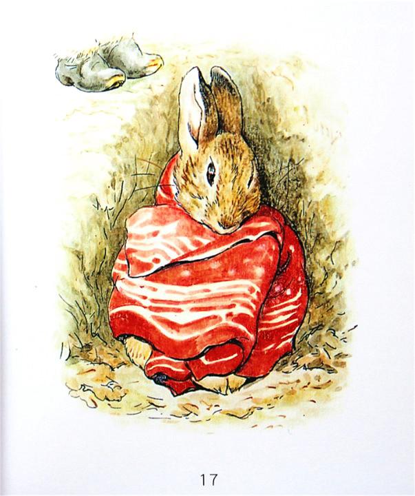 碧翠克丝波特(BeatrixPotter,1866-1943),生于维多利亚时代的一个英国贵族家庭,从小受到良好的绘画教育,喜爱将身边的小动物拟人化,用绘画来表达自己对周围世界的观察和想象。1893年,她在写给男孩儿诺尔?莫尔的信中,编绘了一个调皮小兔子的故事。该故事在1902年出版,成为彼得兔系列图画书中的第一本。一个多世纪以来,彼得兔系列畅销不衰,一直在幼儿图书领域占据非常重要的地位,构筑了世界童书史上的世纪经典。 译者程雯,网名囡囡妈,是网上著名的童书阅读推广人之一,旅居加拿大,对欧美原版图